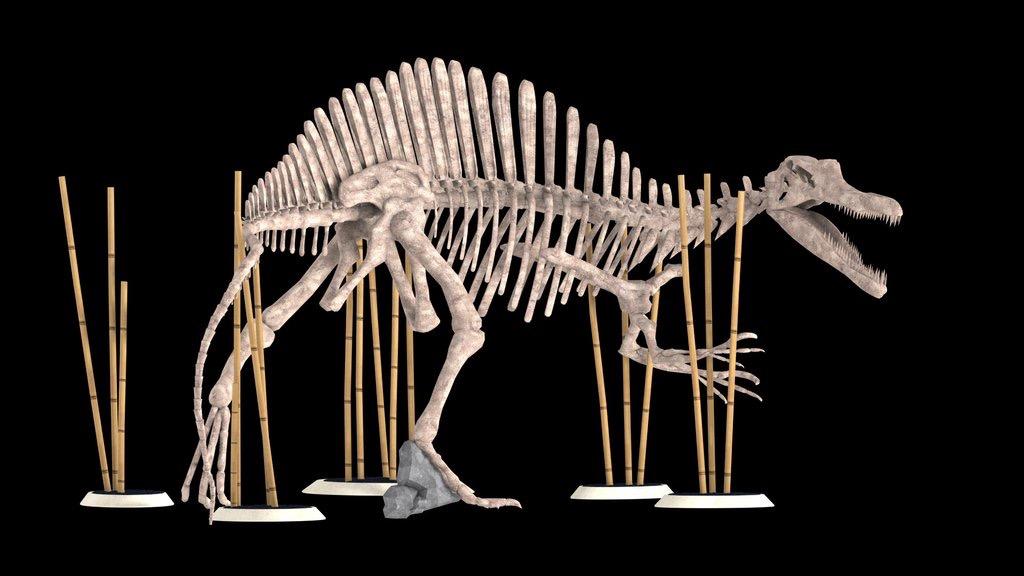As seen crashing apart by the Tyrannosaurus Rex in Jurassic World.