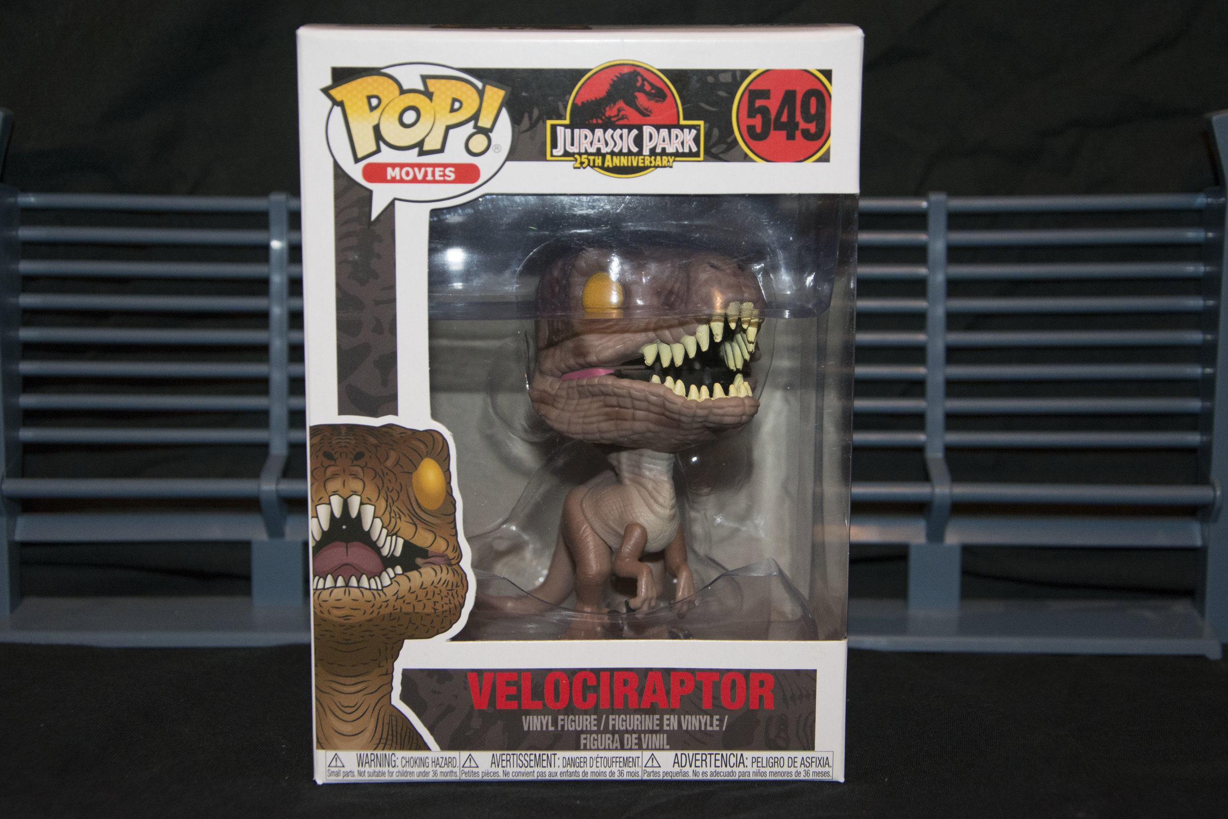 Raptor 1.jpg