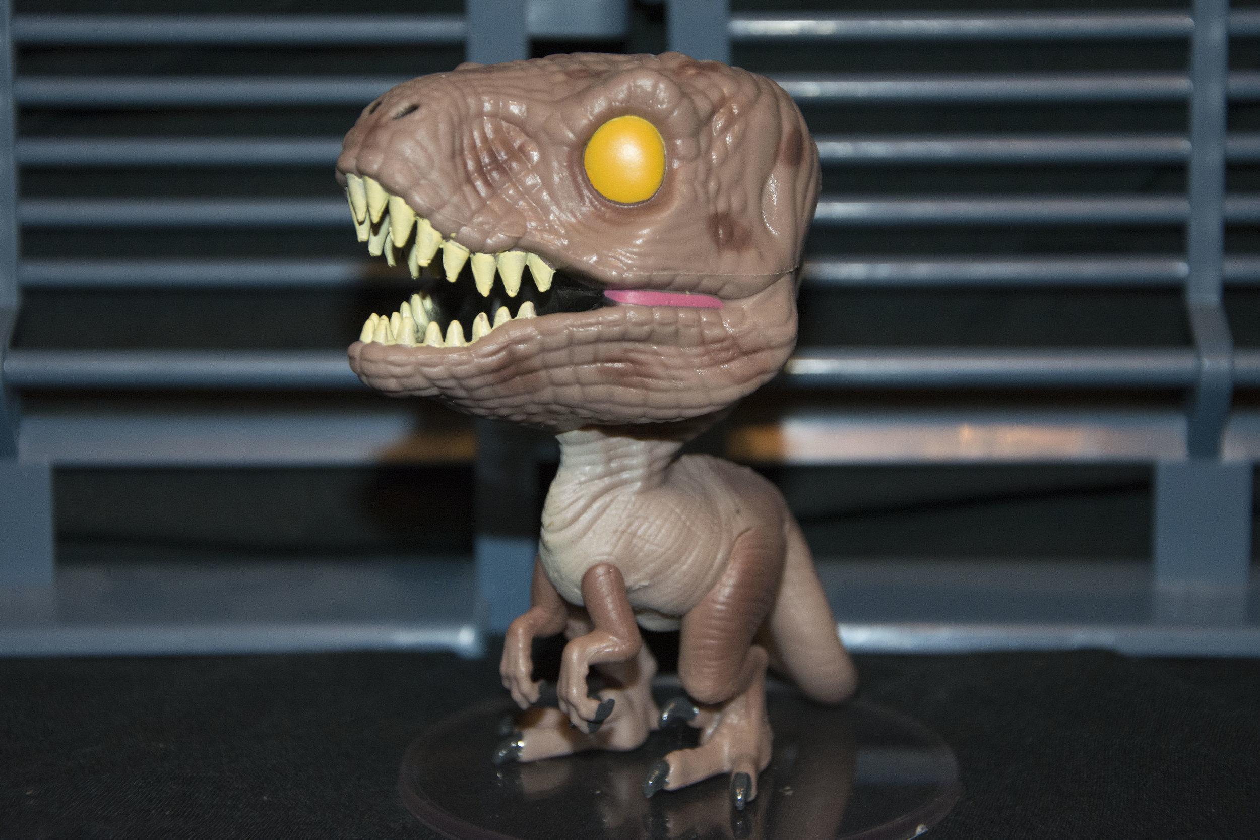 Raptor 6.jpg