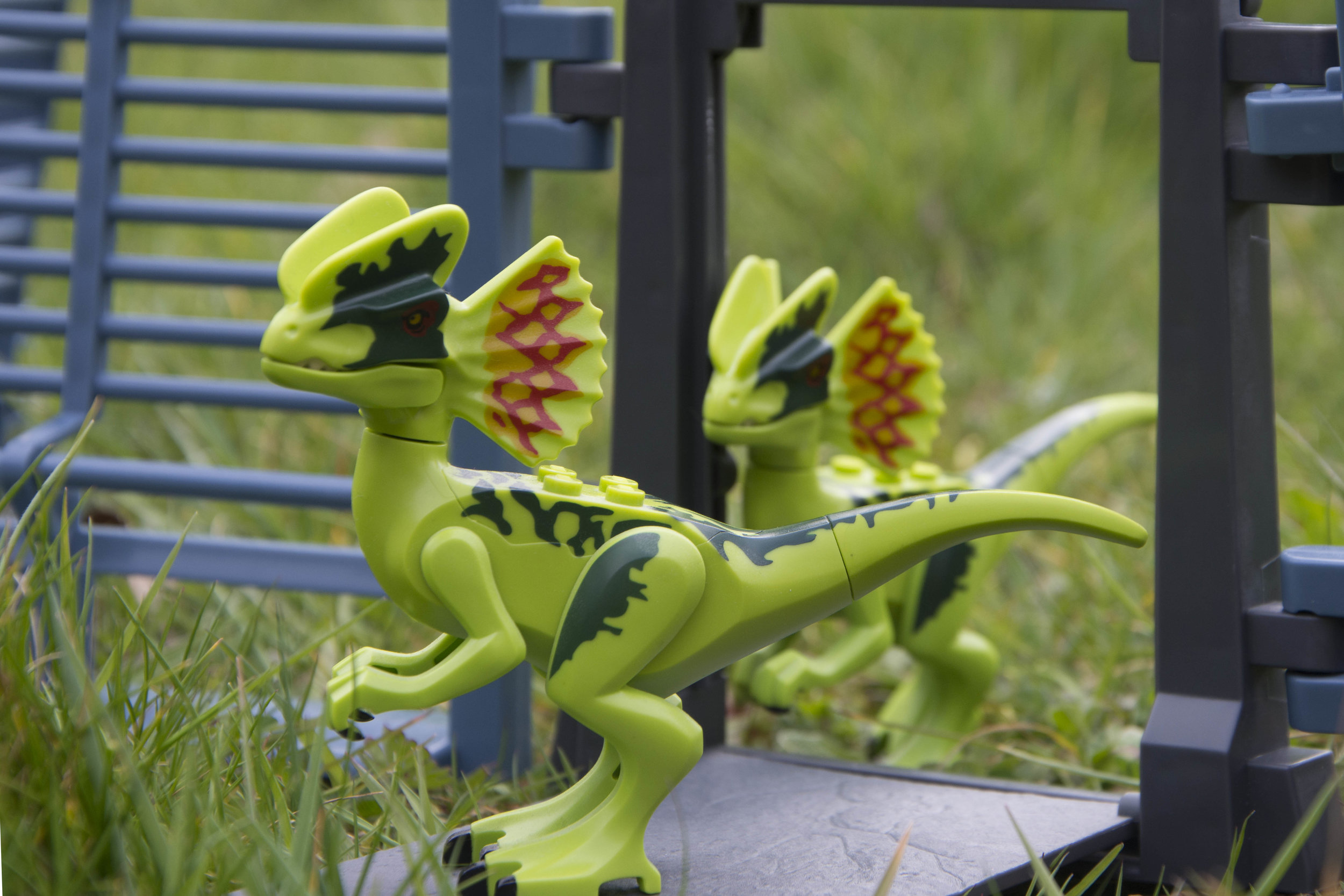 Dilophosaurus 2.jpg