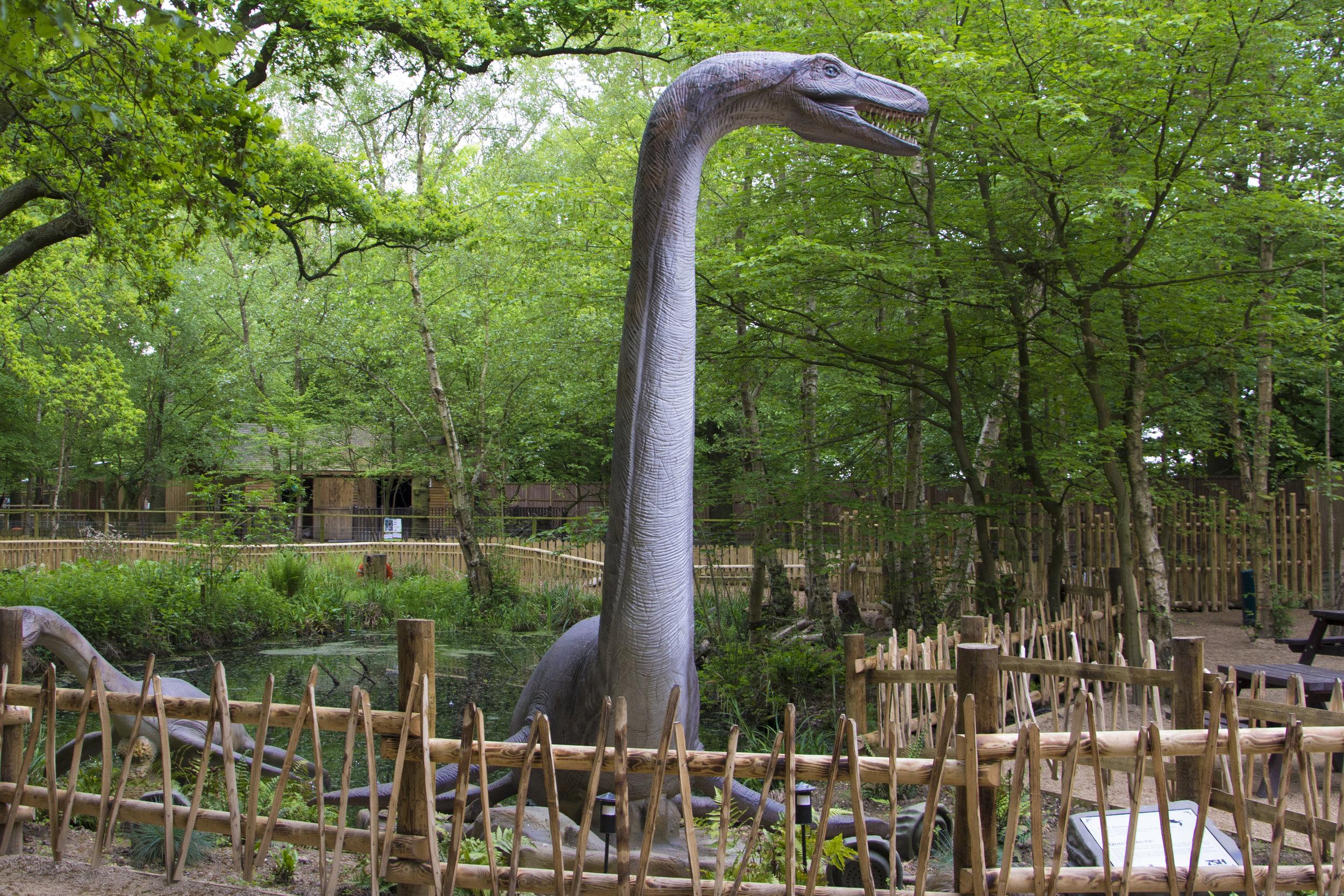 Pleisiosaur.jpg