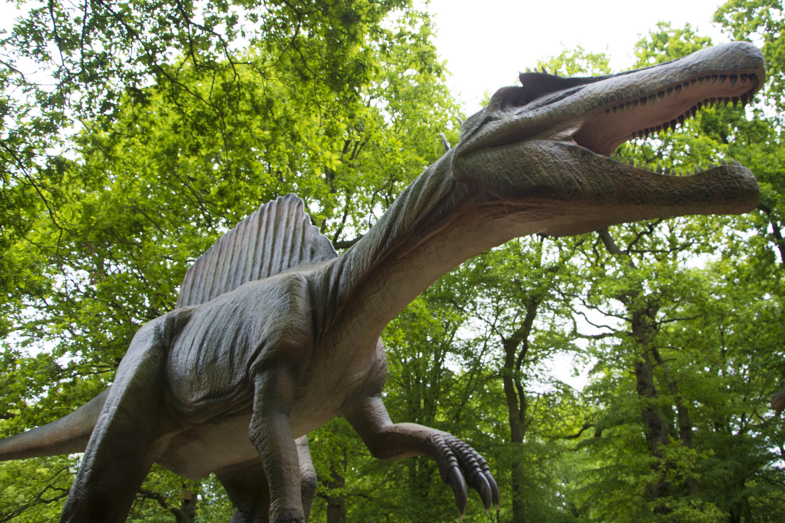 Spinosaurus 2.jpg