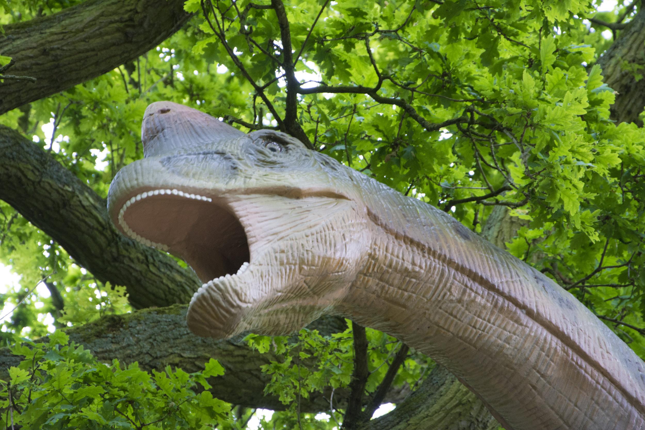 Brachiosaurus 2.jpg
