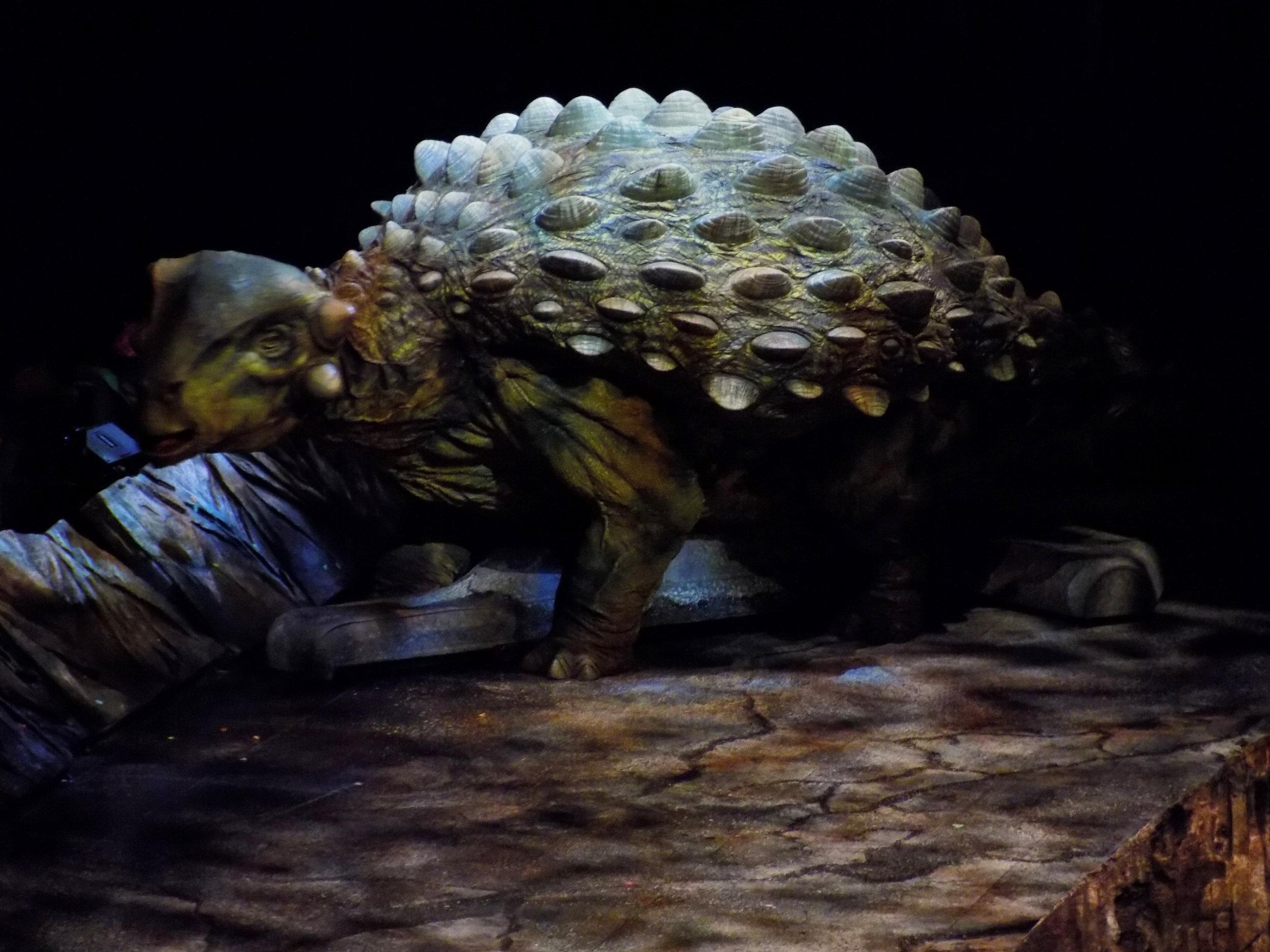 Ankylosaurus 2.jpg