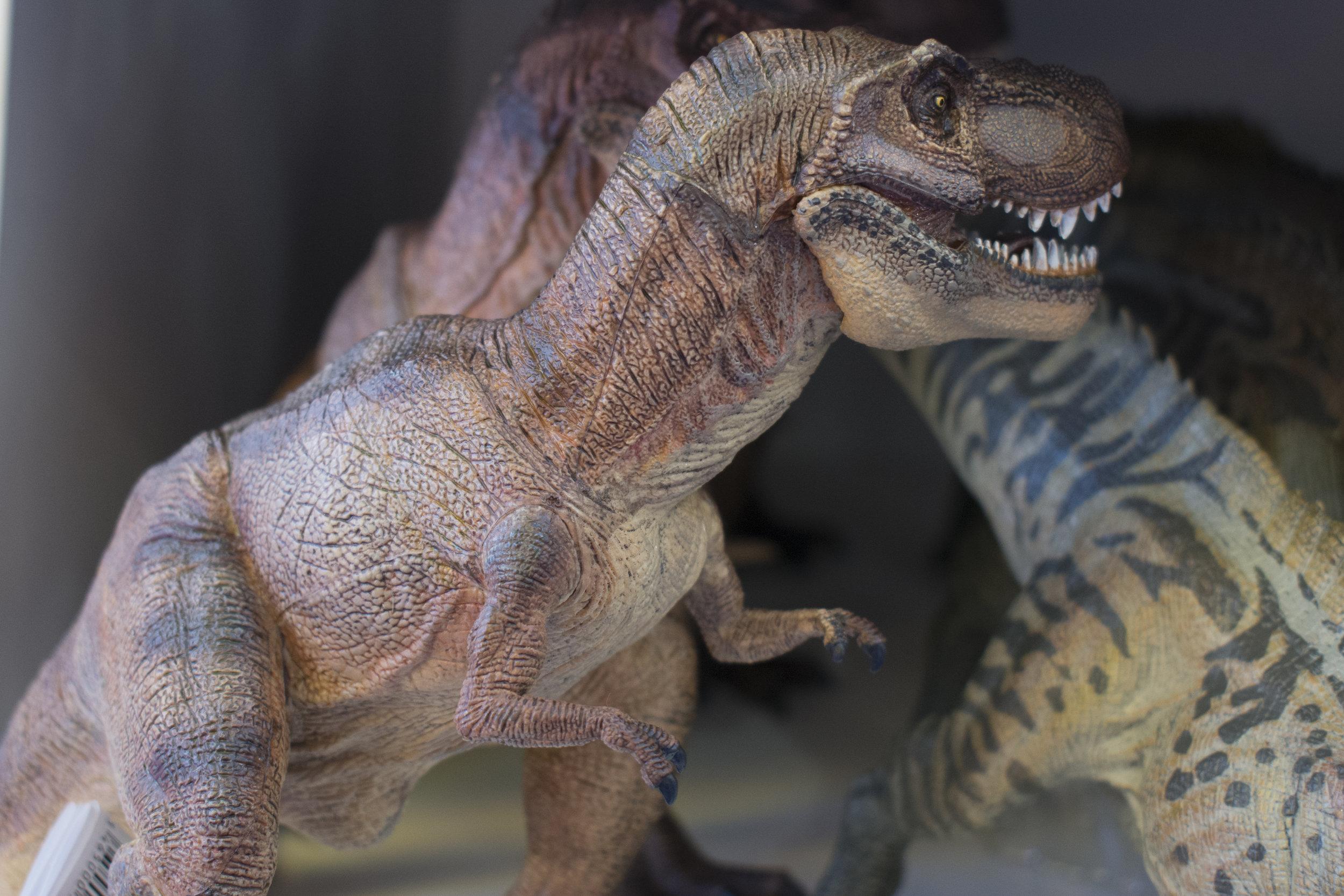 Papo T-Rex Brown.jpg
