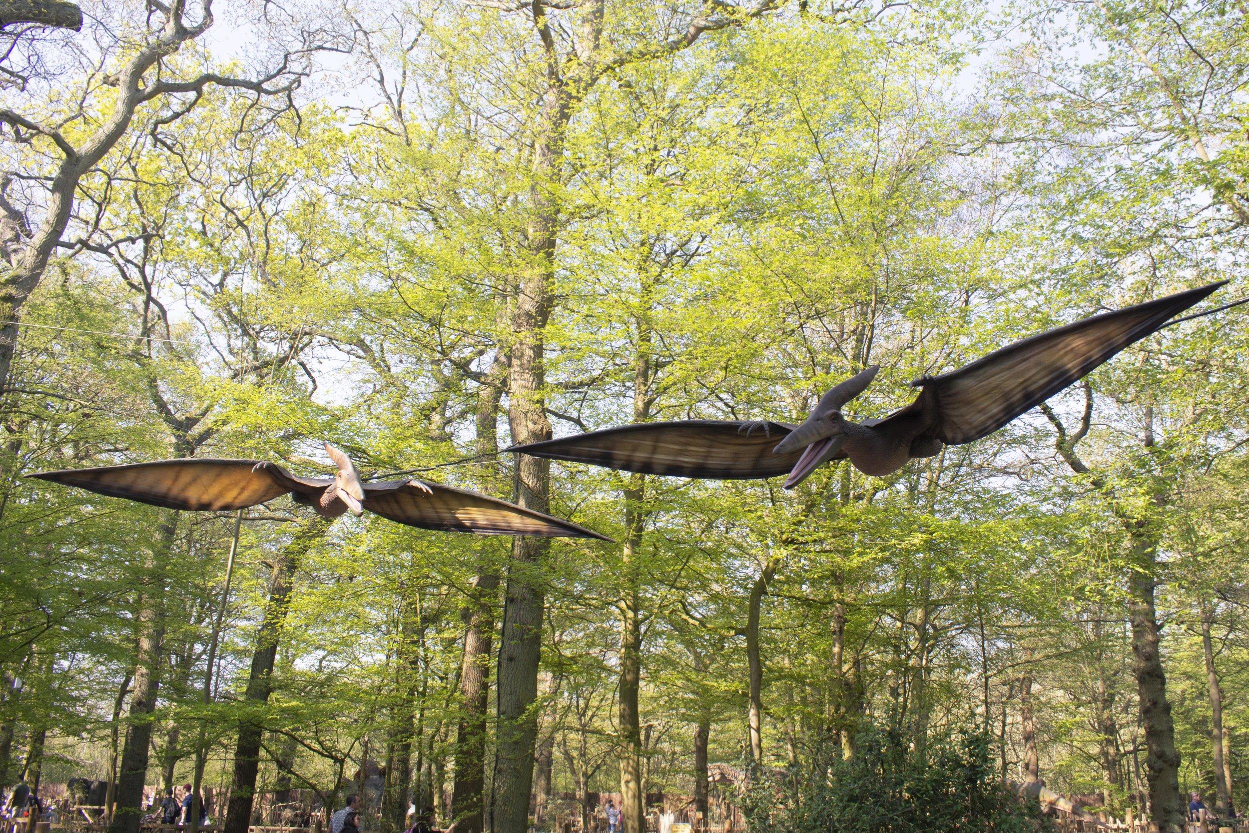 Pteranodons 1.jpg