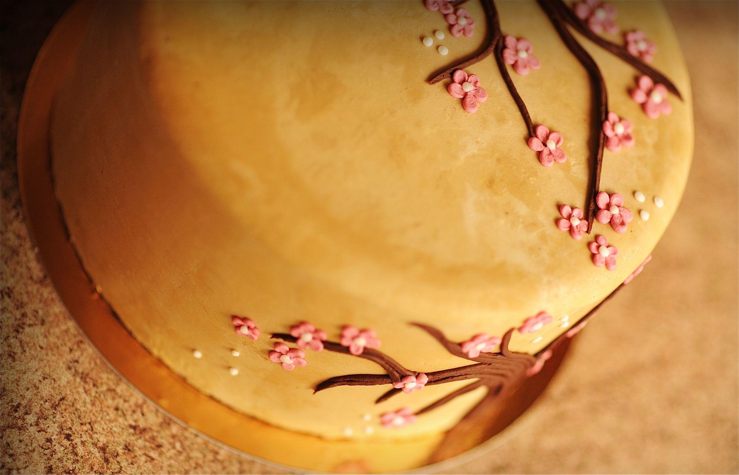 CU40 blossom.jpg