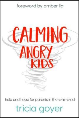 cover Calming Angry Kids.jpg