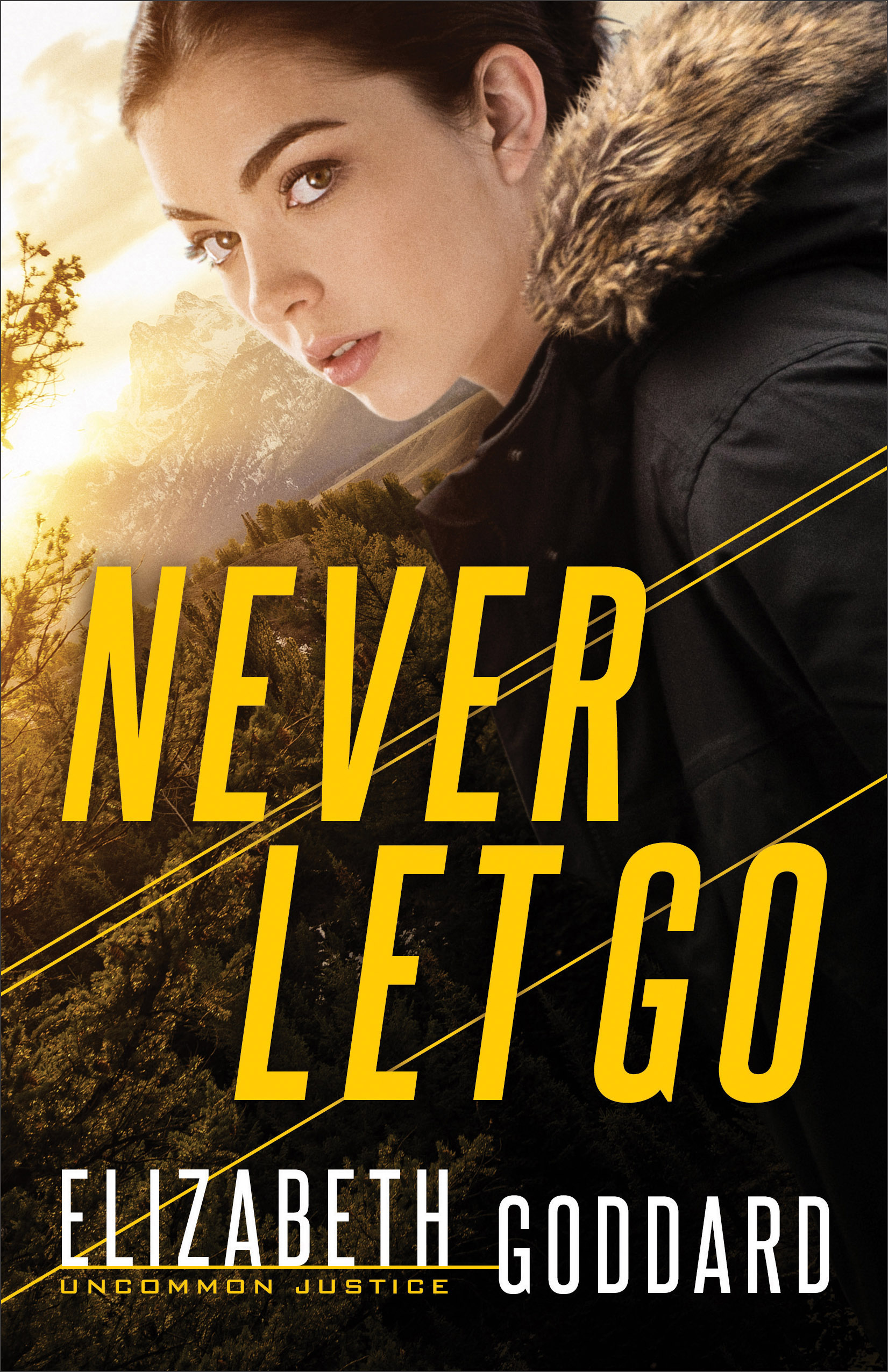 Never Let Go-Book Cover.jpg