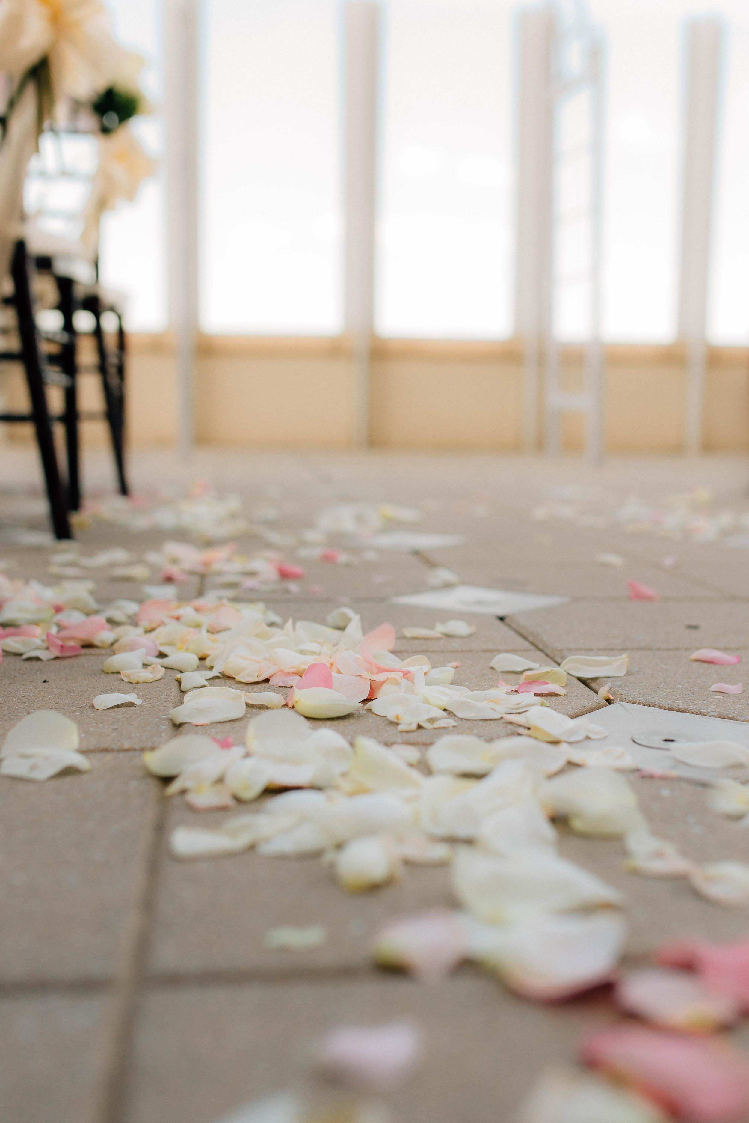 virginia-beach-wedding-photographer-norfolk-wedding-photographer-porstmouth-wedding-photographer-beach-wedding-inspiration