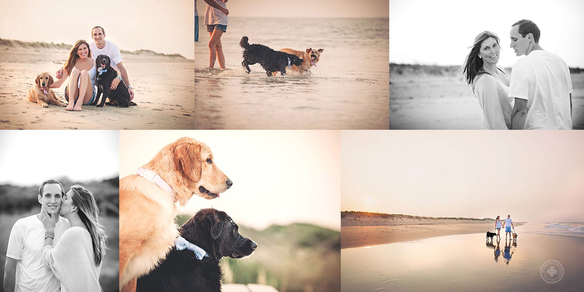 beach-photo-session-couple-with-labs-at-sunset-melissa-bliss-photography