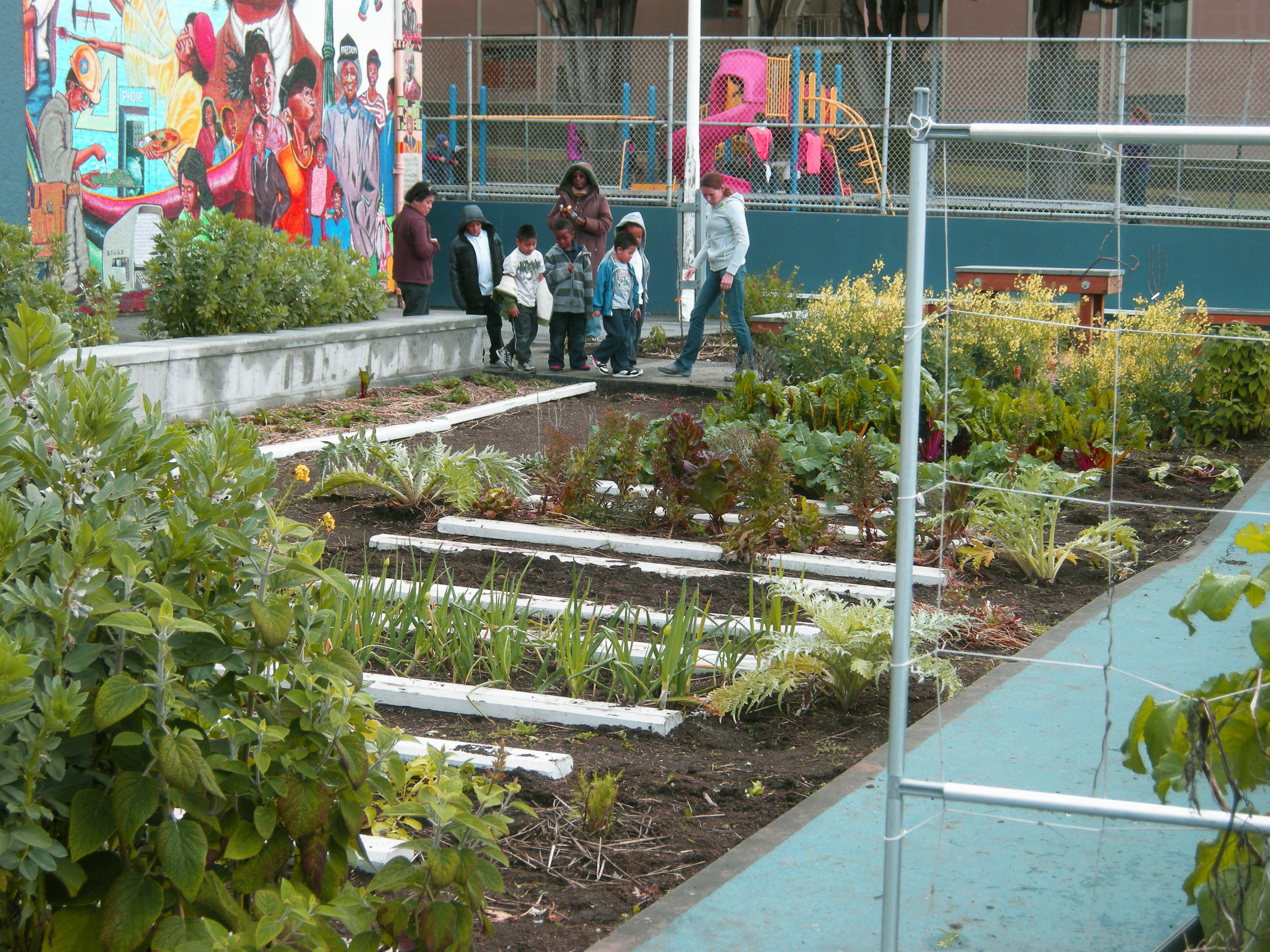 RosaPark_Crops in Garden_r.jpg