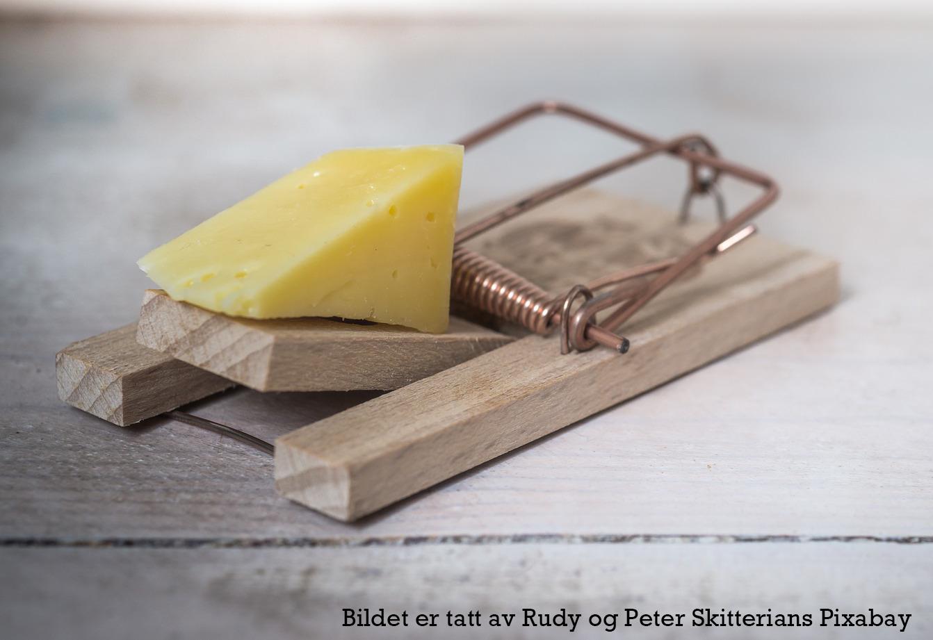 Bildet viser musefelle med ostebit