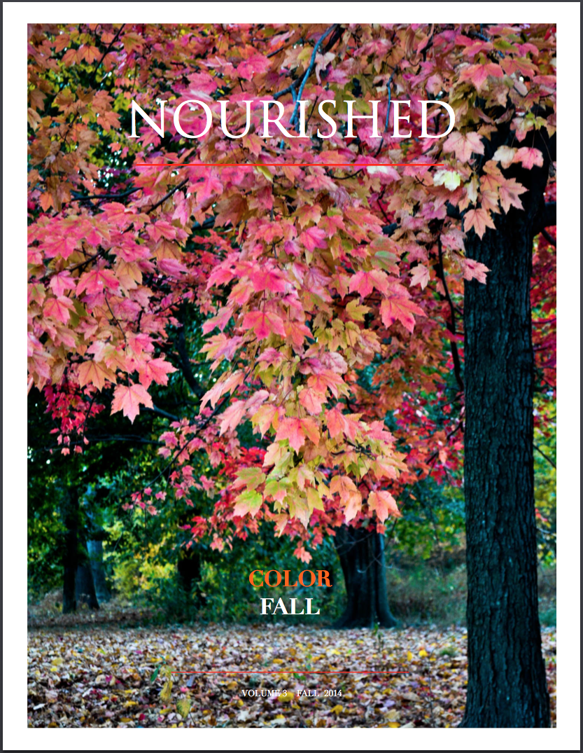 nourished magazine - colorfall - vol.3 - Fall 2014