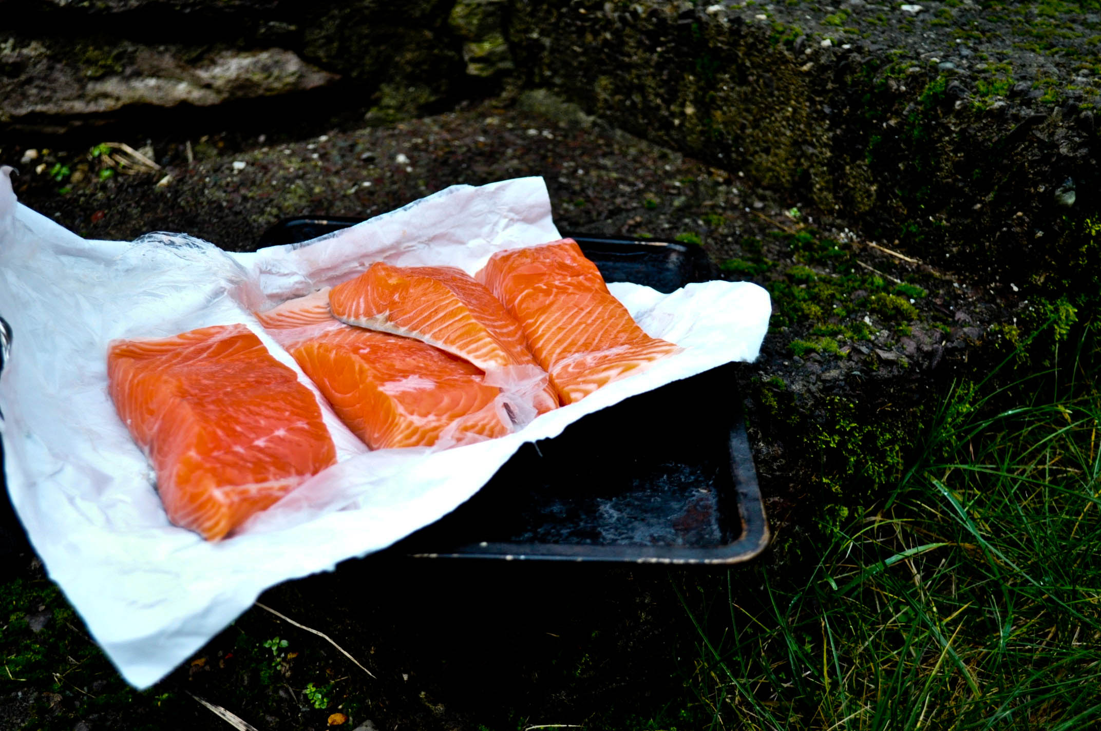 Salmon - a local fish in Ireland is cheap even wild caught. Eating what is easily grown in your area, keeps budgets in line and principles aligned.
