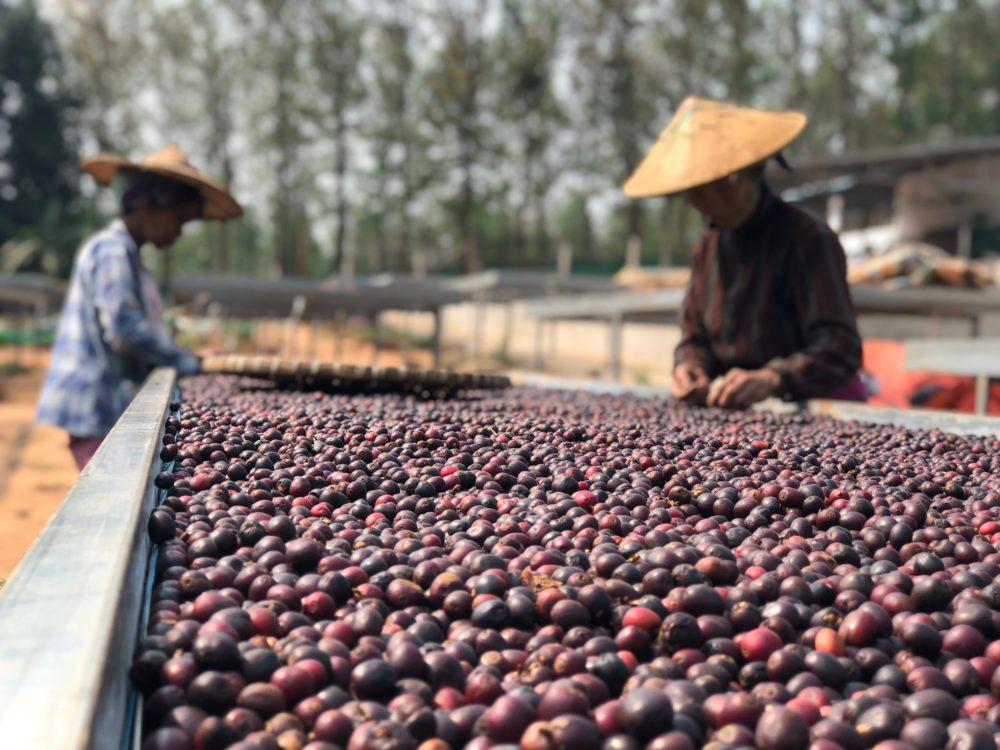 MYANMAR-e1529099342247 (1).jpg