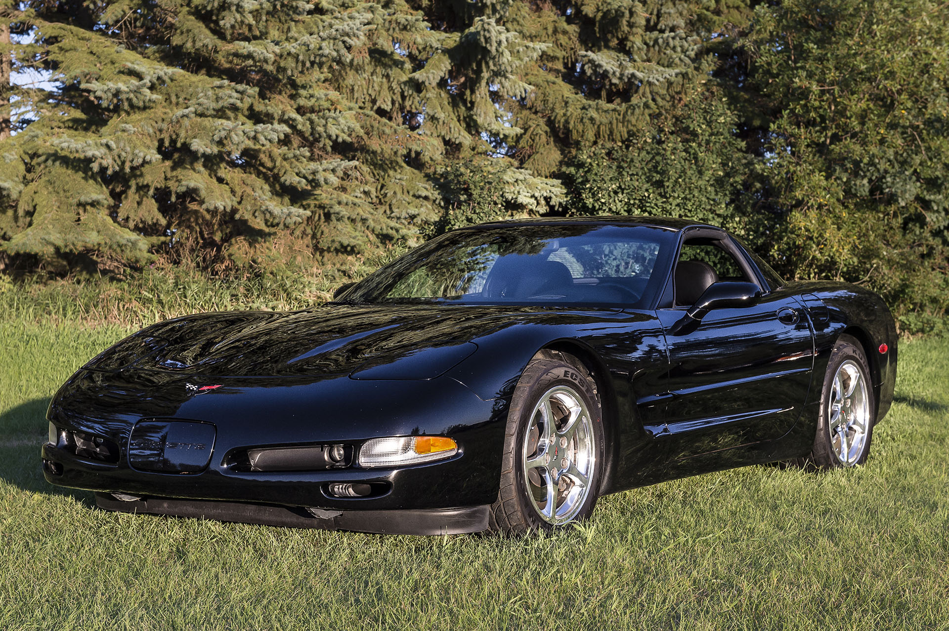 2000 - C5 - Corvette   All Stock except for Magna-Flow exhaust.  5.7 Litre V8 Engine, Automatic Transmission with 67,000 kms.  This car has provided the owner with many enjoyable trips and Kruz's with Just Kruzin Car Club