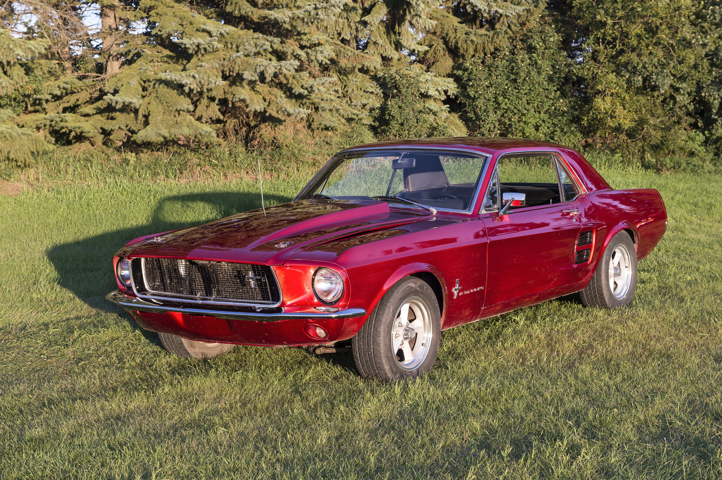 1967 Mustang Coupe   Car was purchased in Regina and underwent an extensive update. Originally silver in color, 15 weekends later it was a sparkling Wet n' Wild red. Powered by a 302 V8 from 95 SVT. The Cam and Carb have been upgraded and backed by a C6 tranny. You will see this classic car and others at Just Kruzin Weekly Kruz Nights throughout Spring, Summer and Fall seasons.