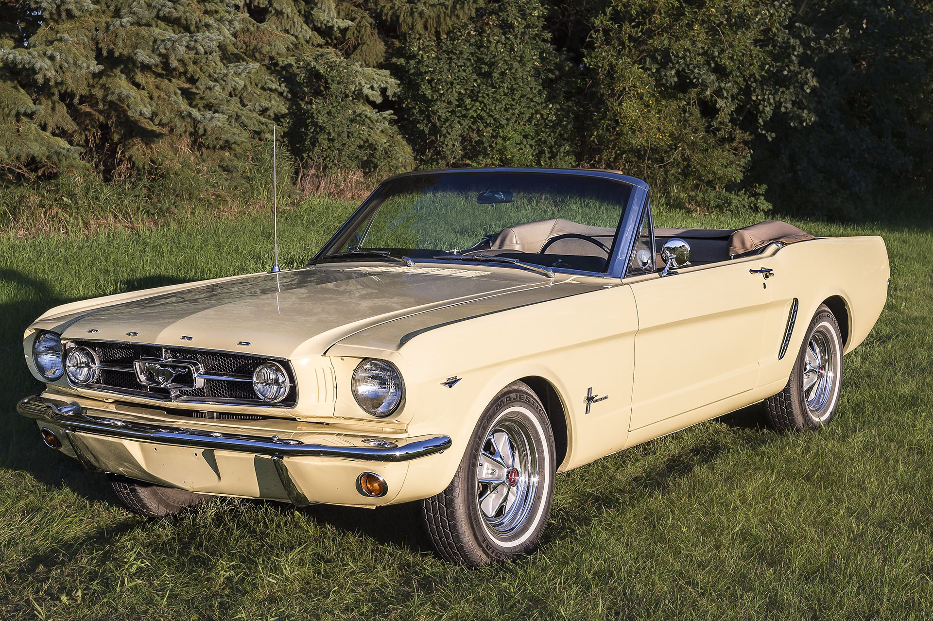 1964 1/2 Mustang Convertible    Built April 23, 1964. This car was completely rebuilt in 2011 on a rotisserie, detailed underneath and then reassembled. Colour is Sunlight Yellow with Palomino interior, 289 engine was balanced and blueprinted, and transmission was upgraded from a 4 to a 5 speed. The car was driven to the Mustang 50th Anniversary celebration in Las Vegas Nevada in April 2014 and is driven to all car shows.