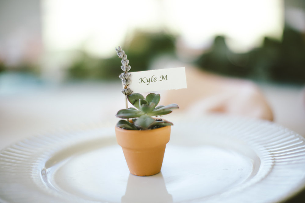 Succulent in terracotta pot placecard