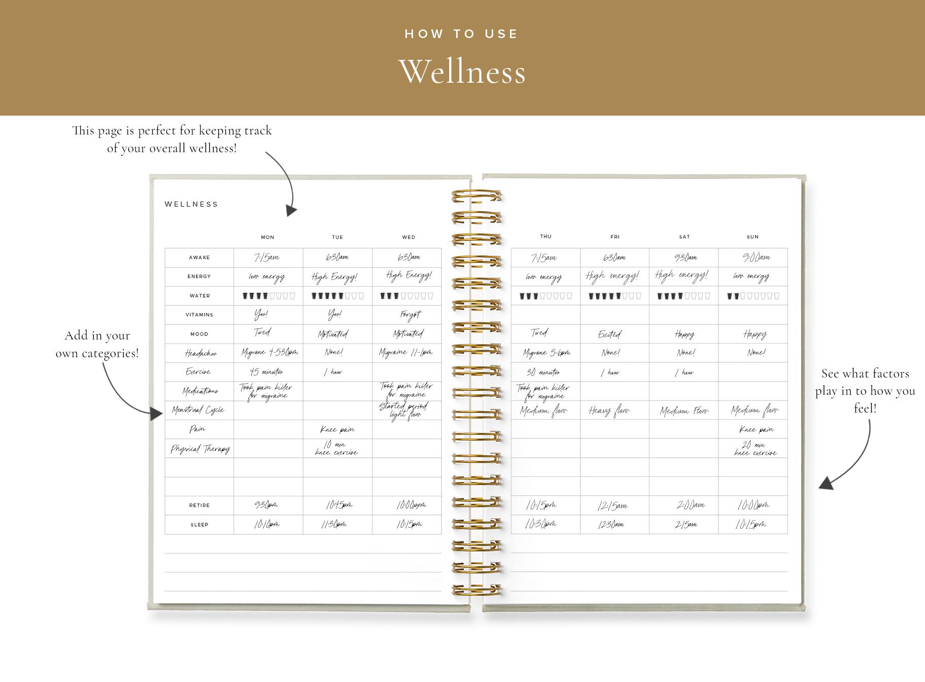 Blog Wellness.png
