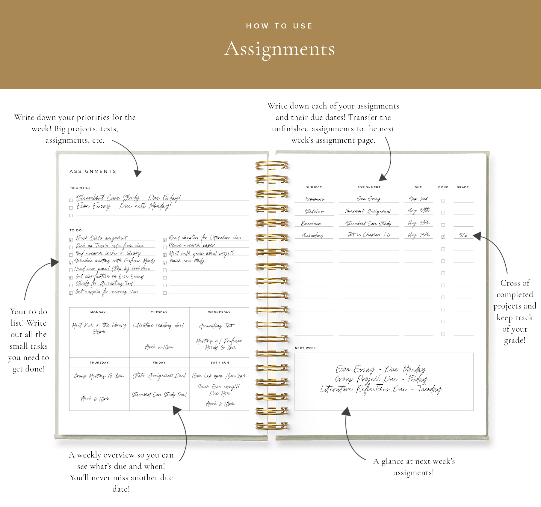 Blog How to Use - Assignments 1.png