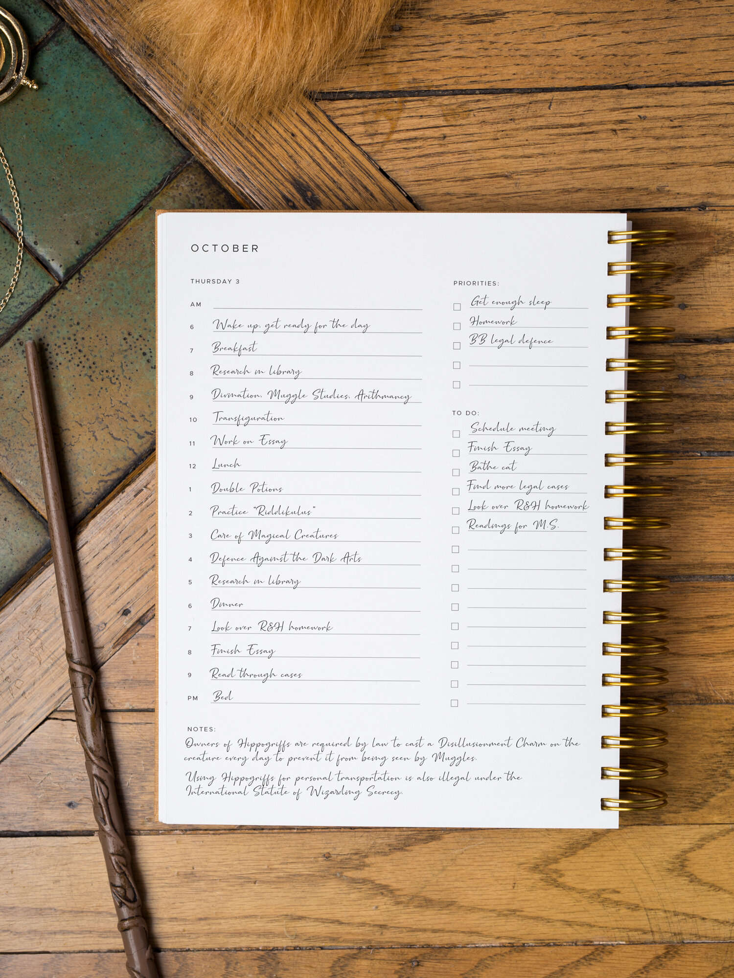 Mystery Planner character's schedule in their Golden Coil Planner