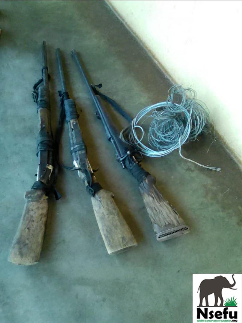 Poachers Rifles