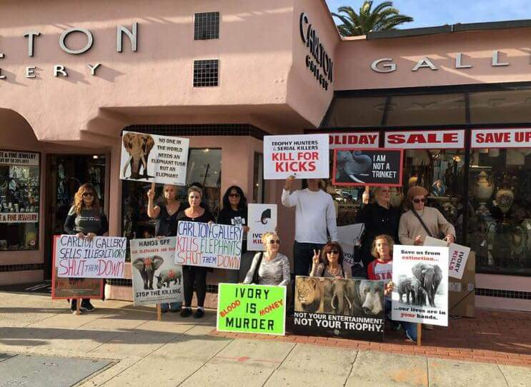 Protest at the La Jolla Gallery!