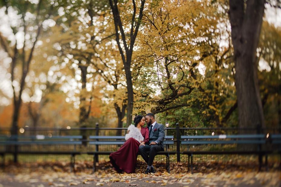 central_park_engagement_4.jpg