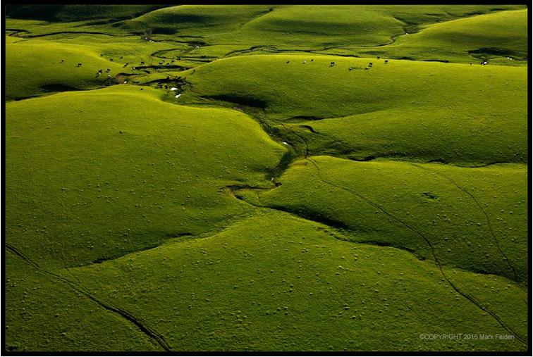 Blanketed Landscape I,  Chase County, Kansas, 2016