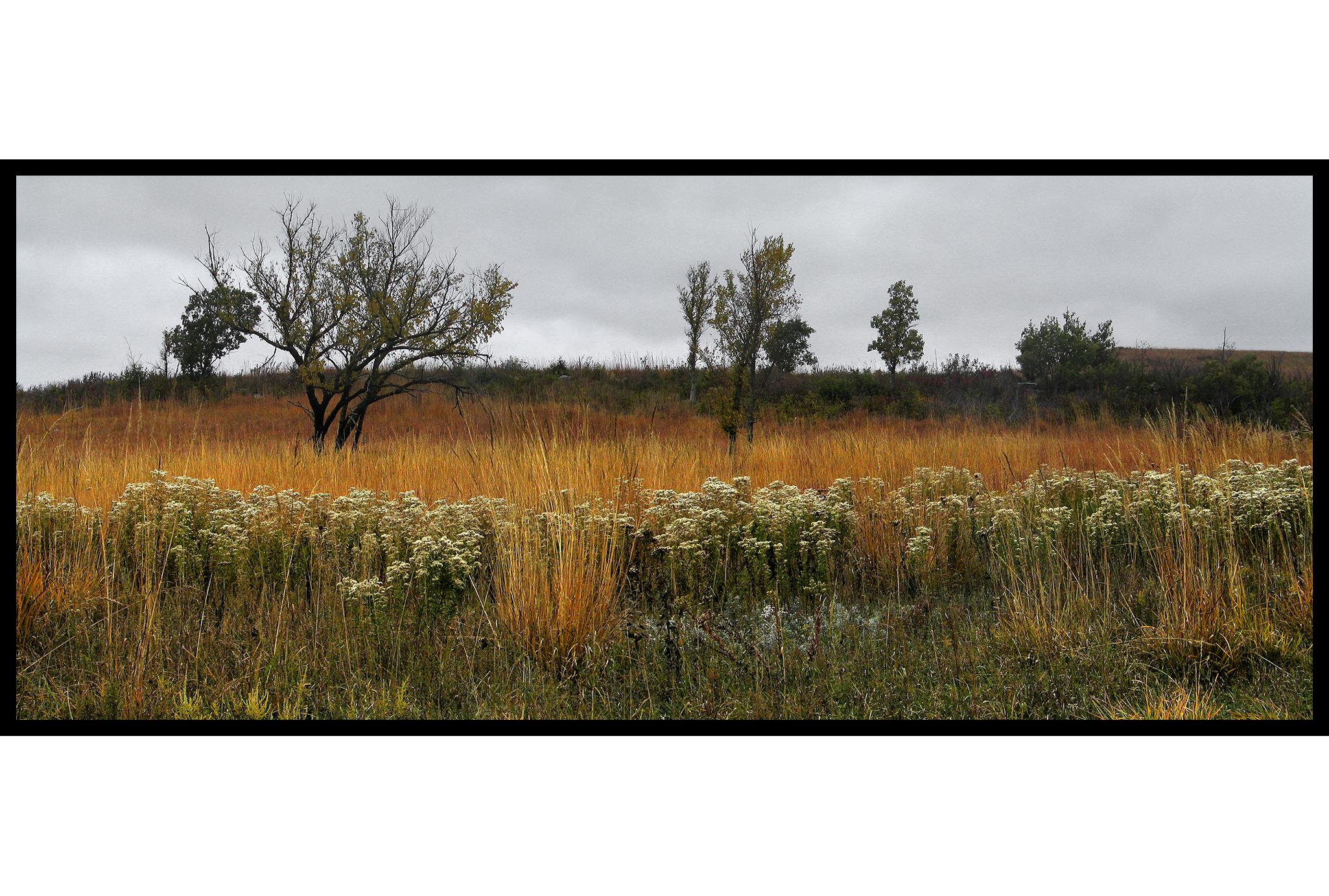 01-004 Fall on the Konza Prairie
