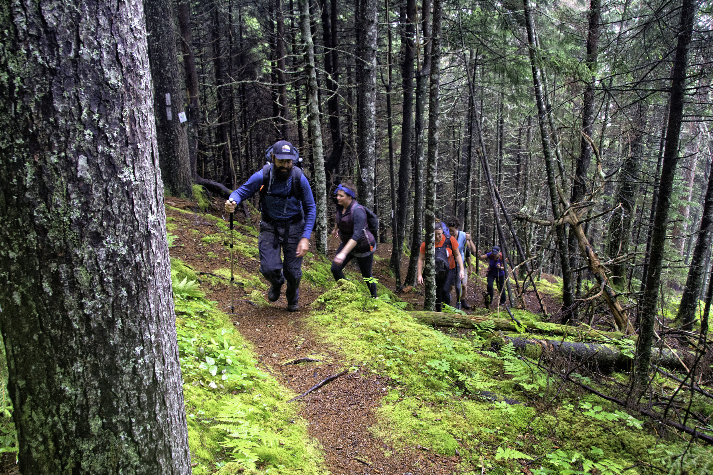FUNDY FOOTPATH: GUIDED BACKPACKING AND SHUTTLE SERVICES -