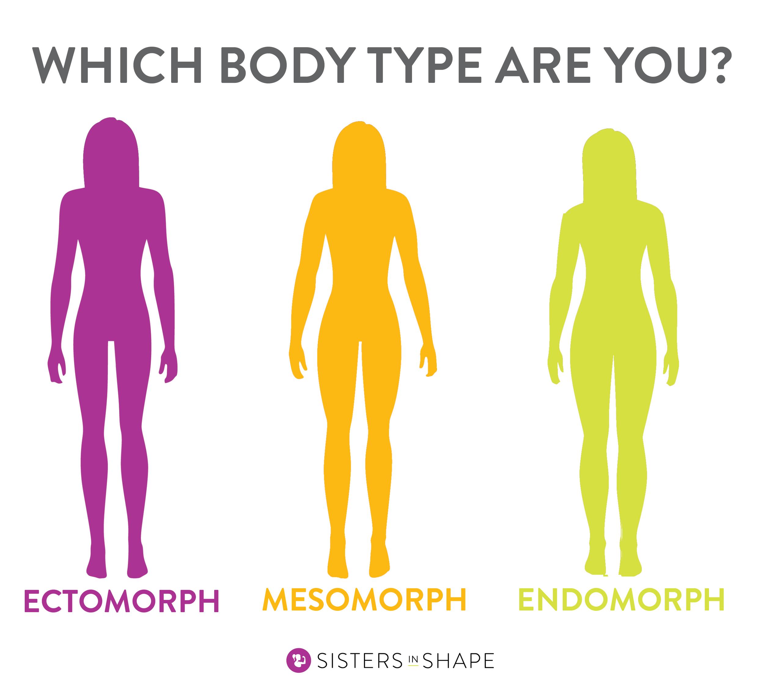 SiS Body Types .png