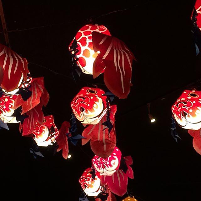 Des lanternes... partout des lanternes...