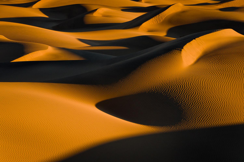Morning on the Mesquite Dunes