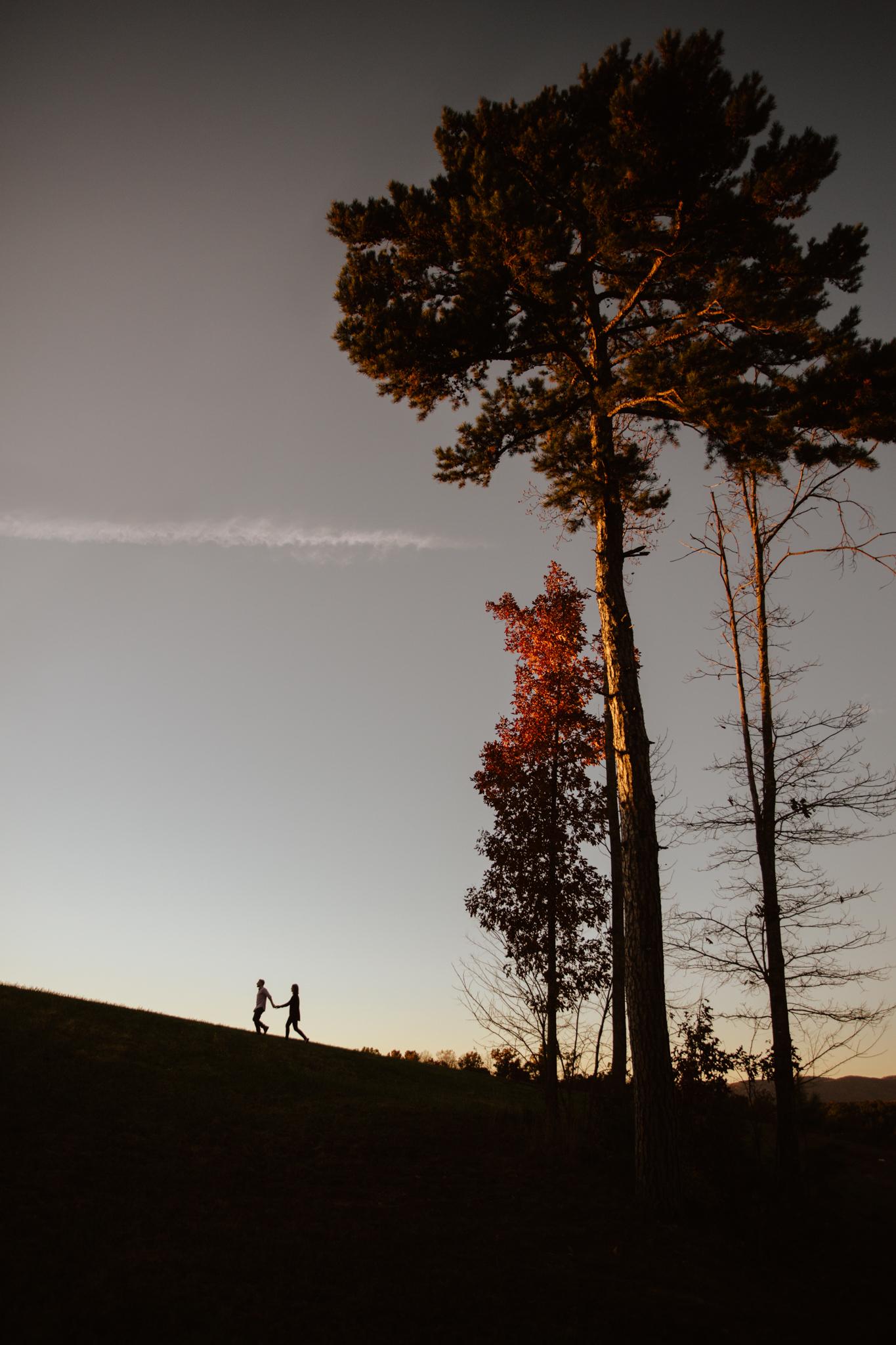 Charlottesville-Fall-Engagement_035.jpg