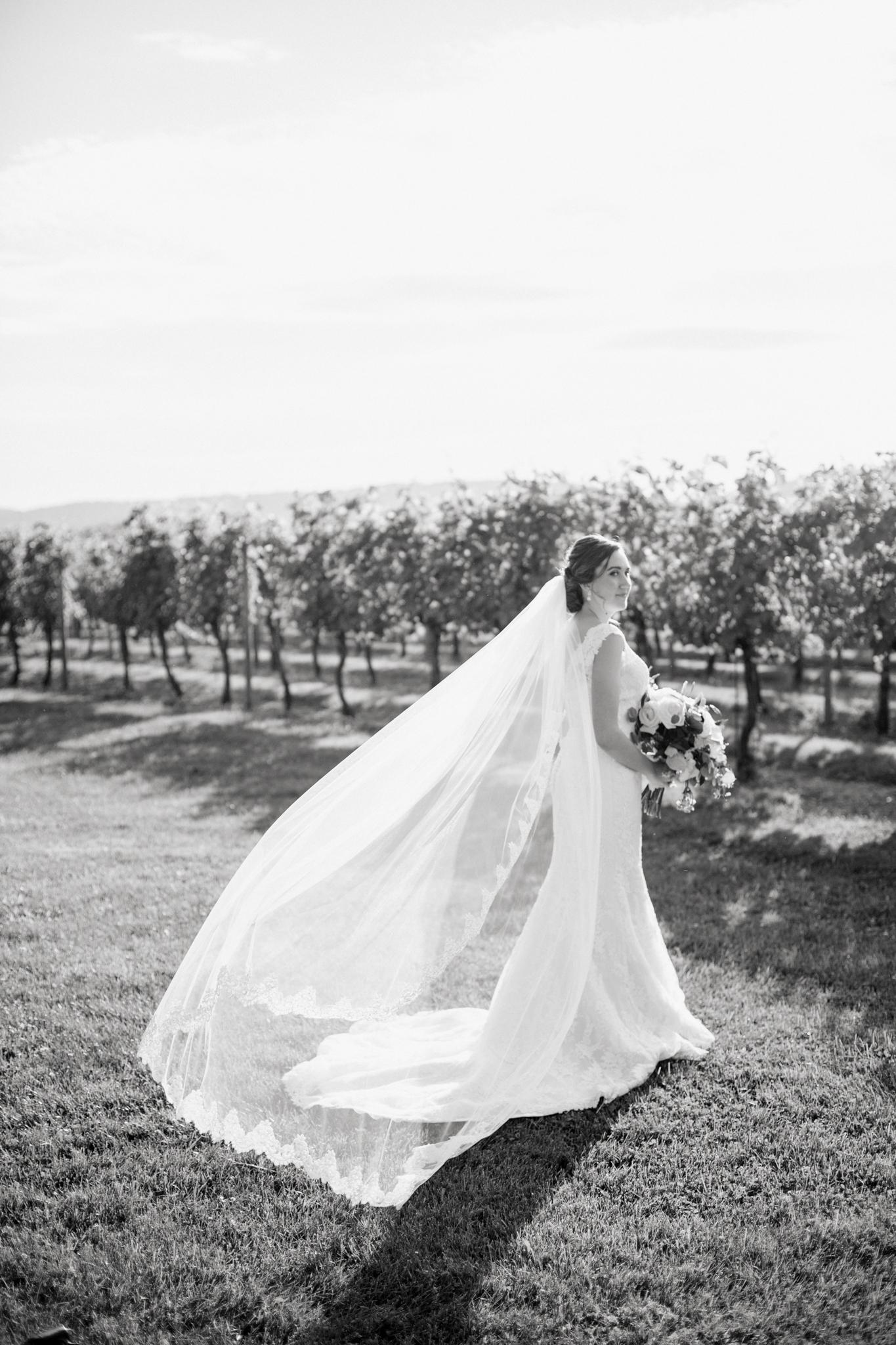 Keswick-Vineyards-Wedding_46.jpg
