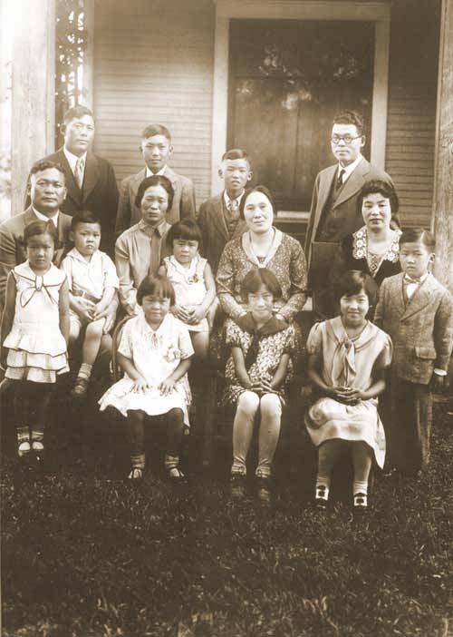 Koto Family