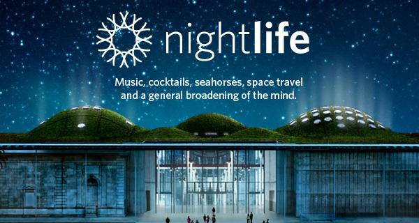 nightlife3.jpg