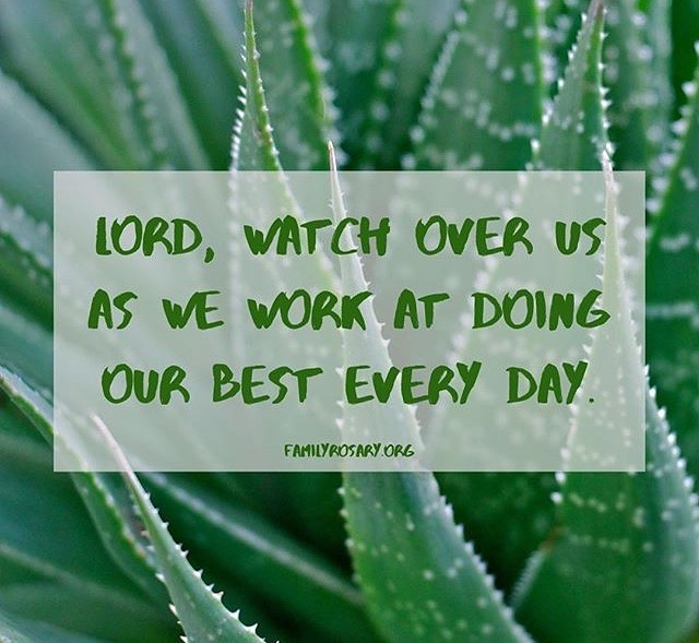 Doing our best everyday. #familyrosary #family #addictionrecovery #sud #substanceuse #support