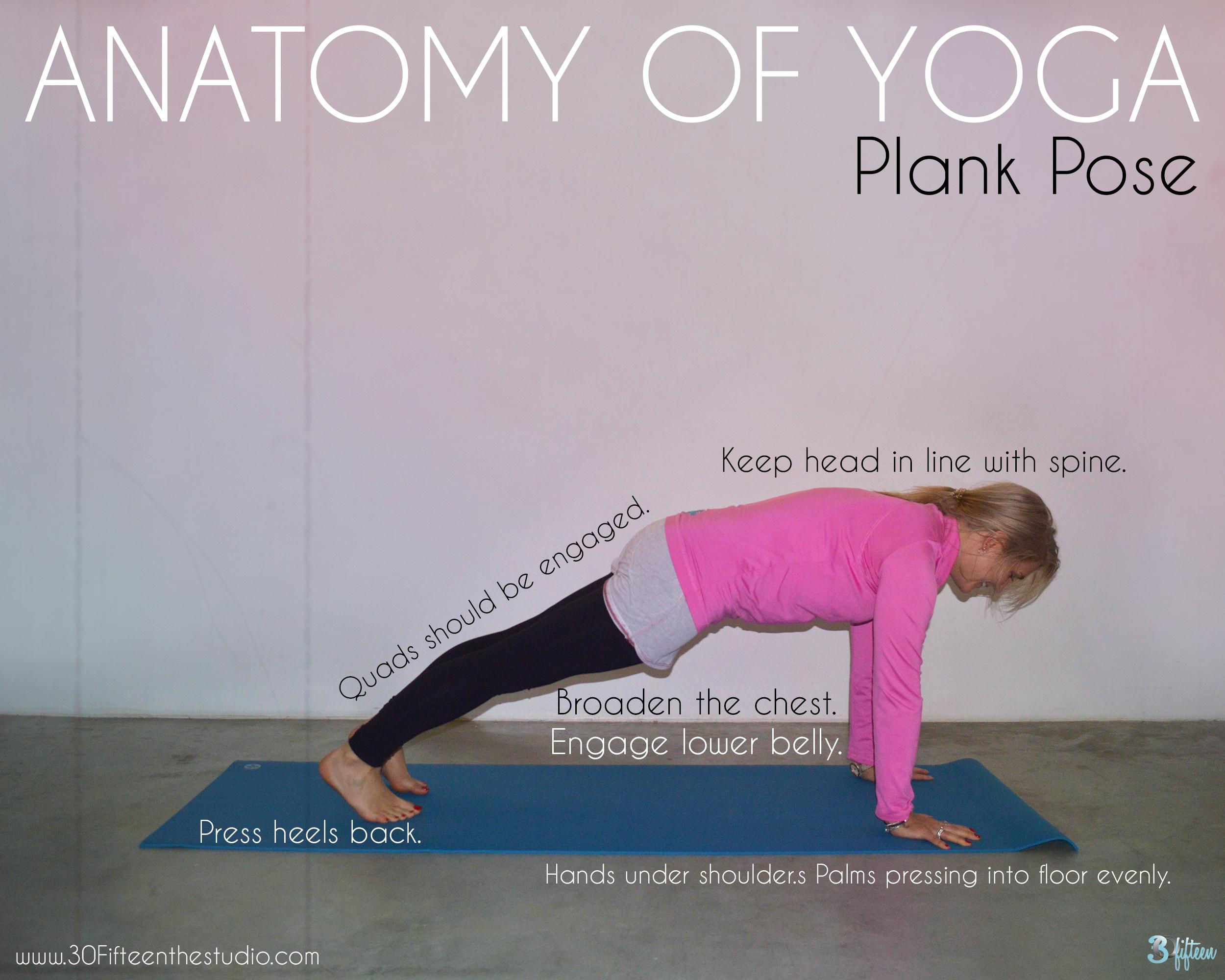 30Fifteen-Yoga-Anatomy-Plank-Pose