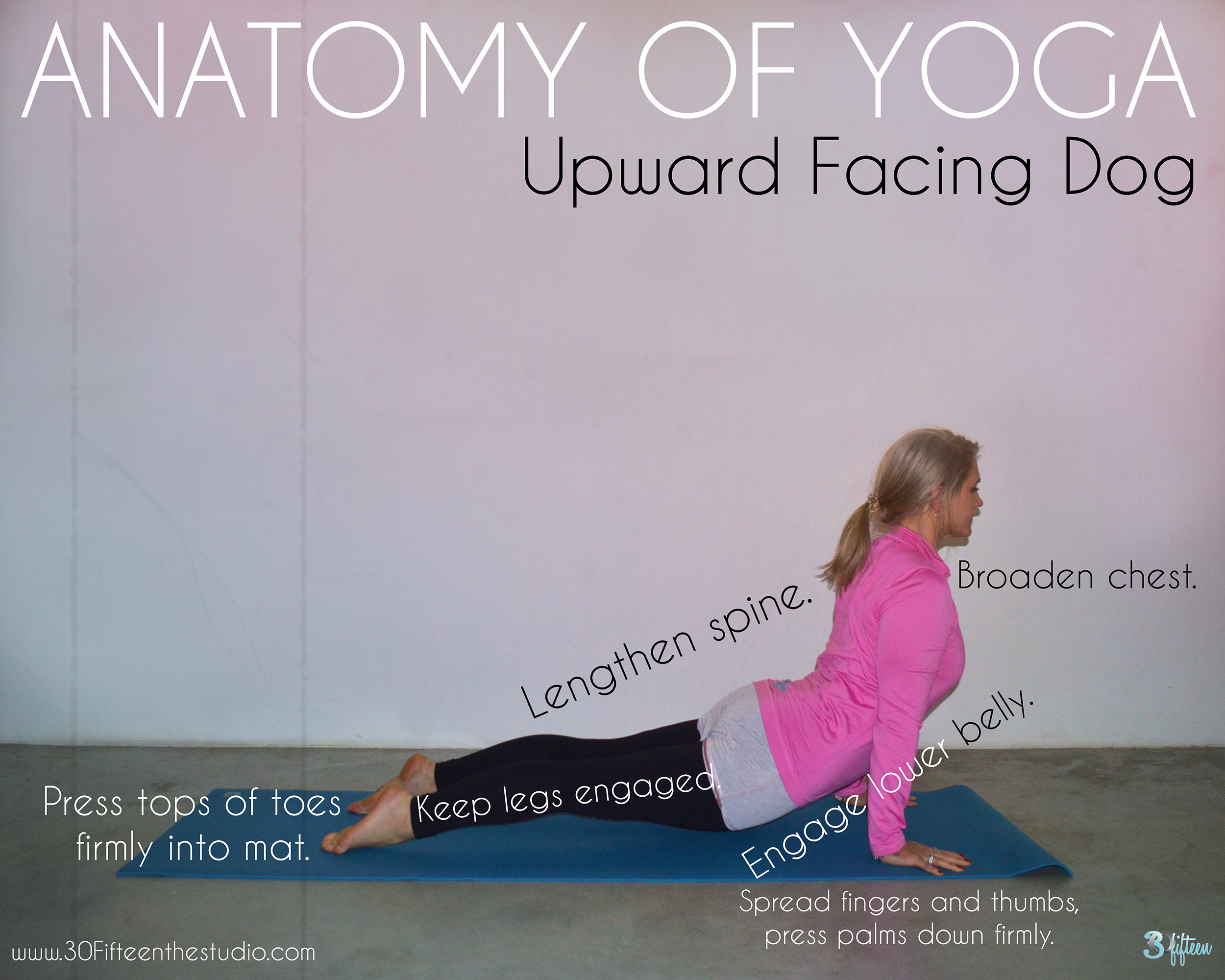 30Fifteen anatomy of yoga upward facing dog