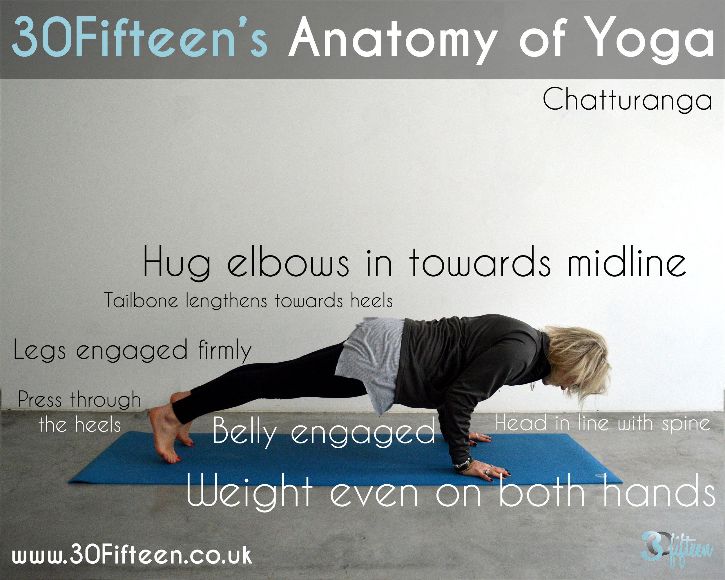 30Fifteen Anatomy of Yoga: Chatturanga