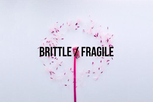 Brittle___Fragile_grande.jpg