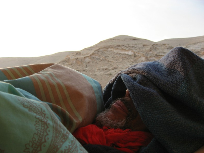Sleeping Fantuzzi at dawn Israel 2012.JPG