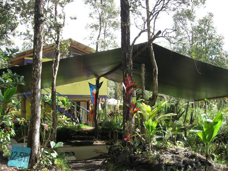 Rainforest Sanctuary.JPG