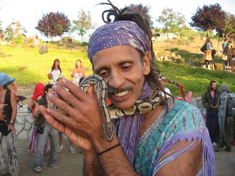 Fantuzzi and Royal Python-One Love3.JPG