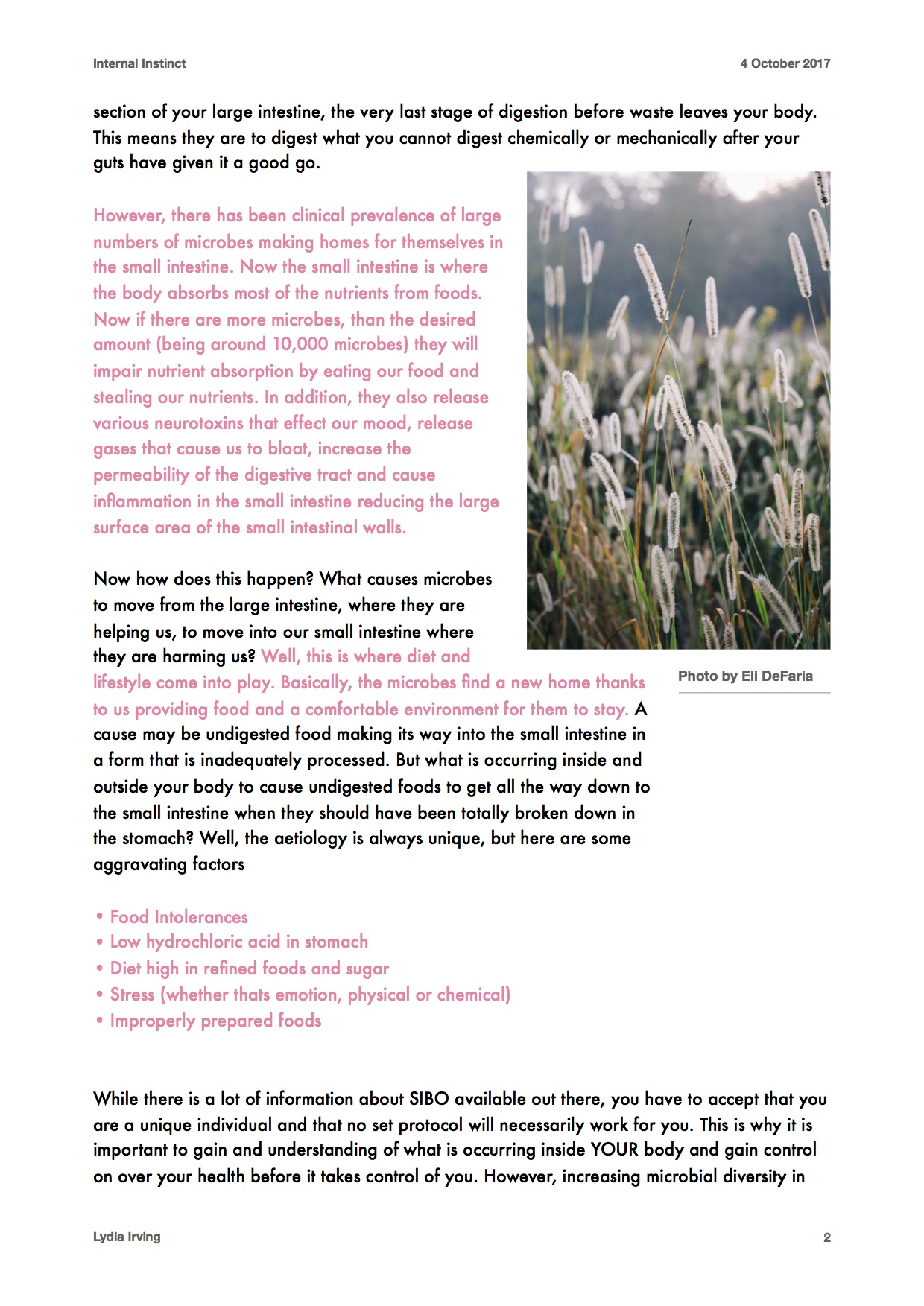 Newsletter V 3.1.jpg