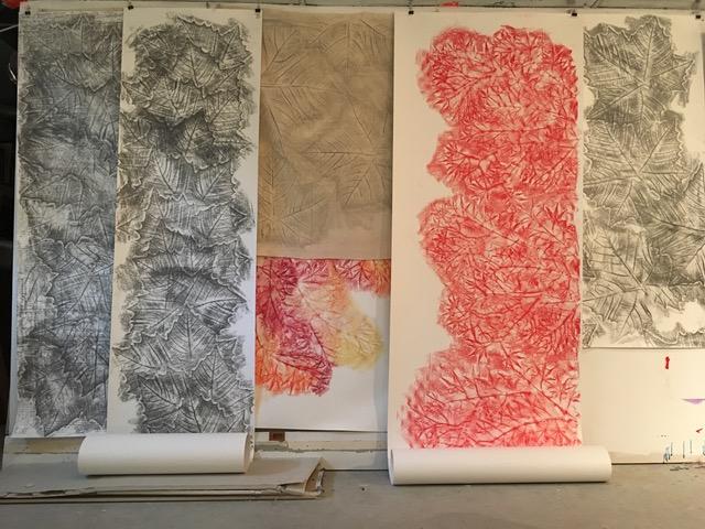 Alyse Rosner_leaf rubbings drawings scrolls